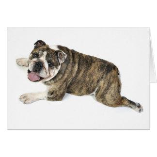 Big Happy Bulldog Card
