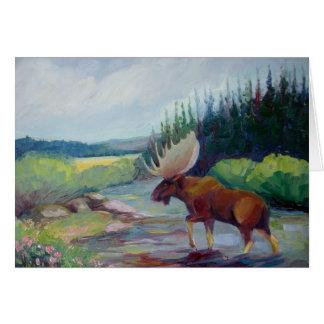 Big Horn Mountain Moose Card