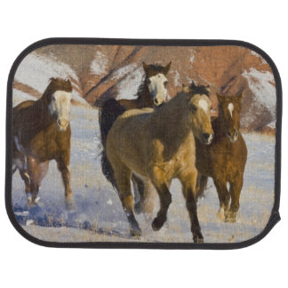 Big Horn Mountains, Horses running in the snow 3 Car Carpet