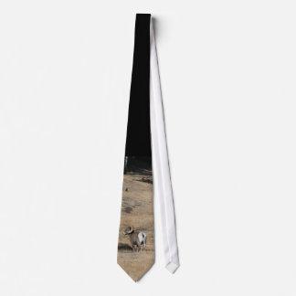 Big Horn Ram Tie