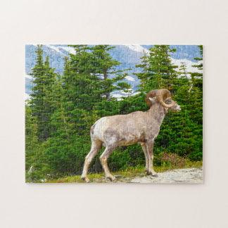 Big Horned Sheep Montana. Jigsaw Puzzle