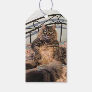 Big Huggable Cat Gift Tags