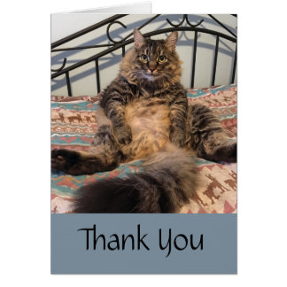 Big Huggable Cat Thank You Note Card