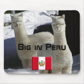 Big in Peru Mouse Pad