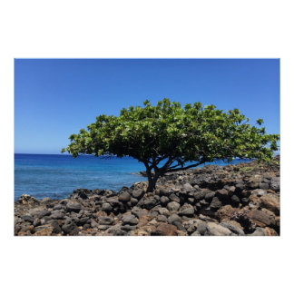 Big Island Tree Poster