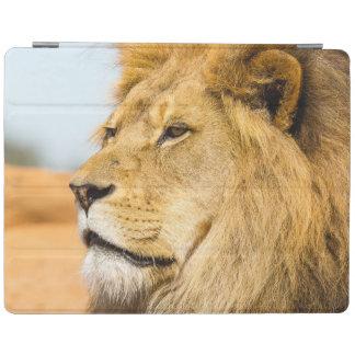 Big lion looking far away iPad cover