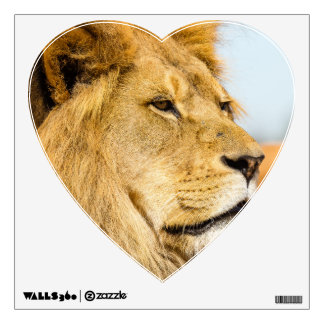 Big lion looking far away wall sticker