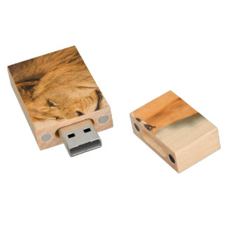 Big lion looking far away wood USB flash drive