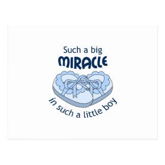 Big Miracle Postcard