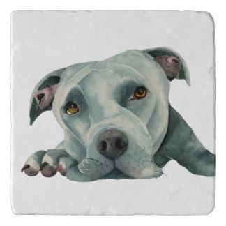 Big Ol' Head - Pit Bull Dog Watercolor Painting Trivet