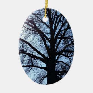 Big Old Aged Tree, Blue Sky, Sunshine Photograph Ceramic Oval Ornament