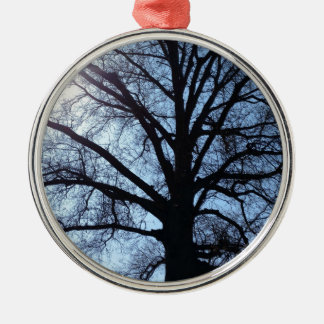 Big Old Aged Tree, Blue Sky, Sunshine Photograph Silver-Colored Round Ornament