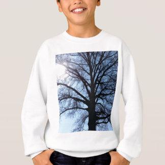 Big Old Aged Tree, Blue Sky, Sunshine Photograph Sweatshirt