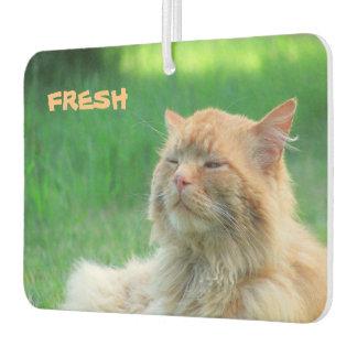 """Big Orange Cat says """"Fresh"""" Car Air Freshener"""