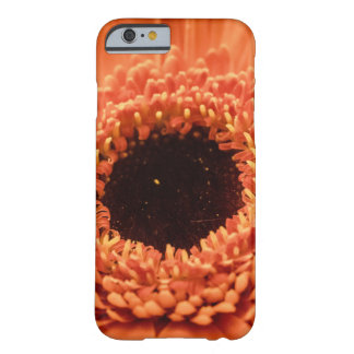 Big Orange Gerbera Daisy Barely There iPhone 6 Case