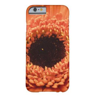 Big Orange Gerbera Daisy Barely There iPhone 6 Case