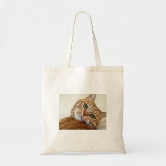 Big Orange Kitty Bags