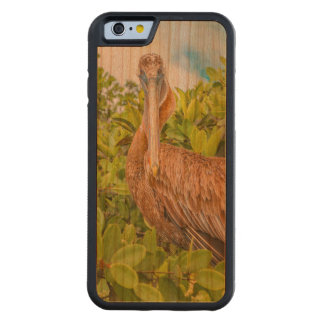Big Pelican at Tree, Galapagos, Ecuador Carved Cherry iPhone 6 Bumper Case