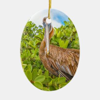 Big Pelican at Tree, Galapagos, Ecuador Ceramic Oval Ornament