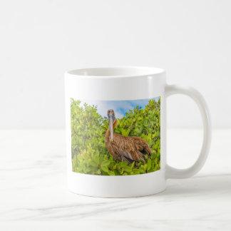 Big Pelican at Tree, Galapagos, Ecuador Coffee Mug