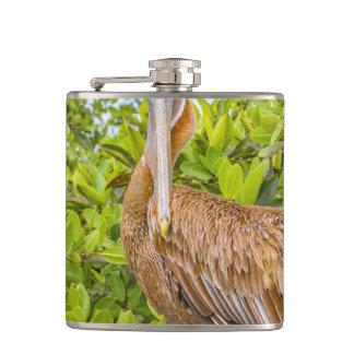 Big Pelican at Tree, Galapagos, Ecuador Hip Flask