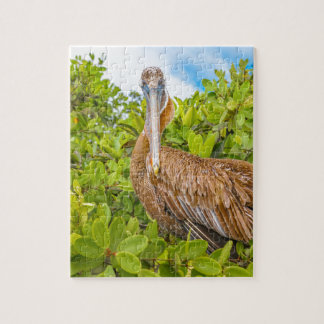 Big Pelican at Tree, Galapagos, Ecuador Jigsaw Puzzle