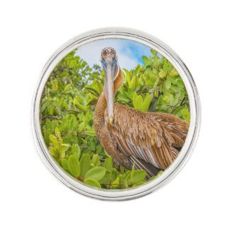 Big Pelican at Tree, Galapagos, Ecuador Lapel Pin