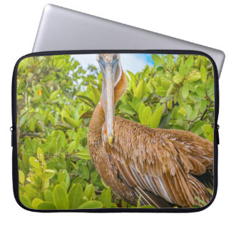 Big Pelican at Tree, Galapagos, Ecuador Laptop Sleeve