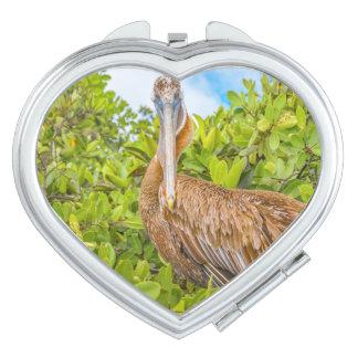 Big Pelican at Tree, Galapagos, Ecuador Mirrors For Makeup