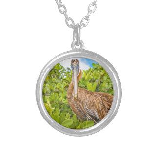Big Pelican at Tree, Galapagos, Ecuador Silver Plated Necklace