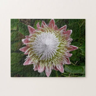 Big Pink and White Flower Puzzle