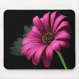 big pink flower mouse mouse pad