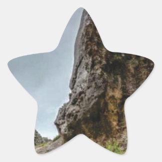 big point little point star sticker