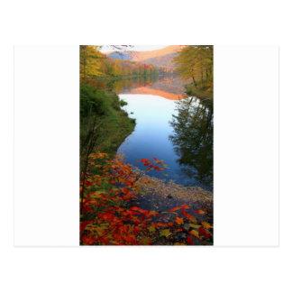 Big Pond Catskills Autumn Paradise Postcard