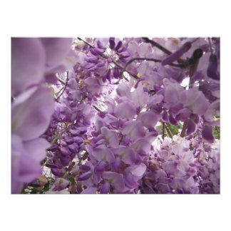 big purple bright flowers garden photo print