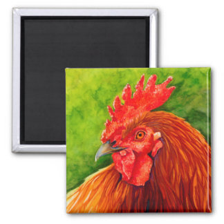 Big Red - Rooster Magneted R Square Magnet