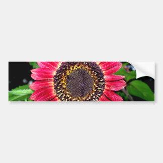 Big Red Sunflower Bumper Sticker