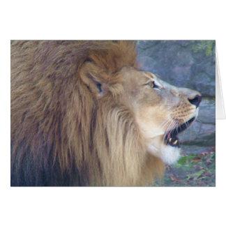 Big Roar Card