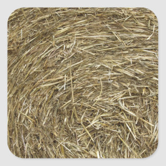 Big roll of hay background square sticker