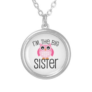 Big Sister Pink Owl Silver Plated Necklace