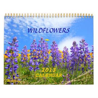 Big Sky Country Wildflowers 2013 Calendar