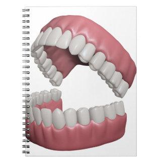 big smile teeth notebooks
