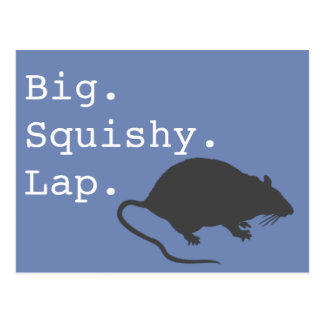 Big Squishy Lap Rat Postcard
