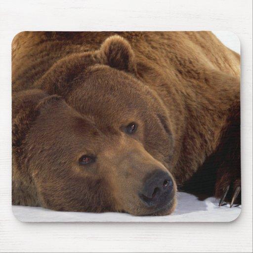 Big Teddy Bear Mouse Pad