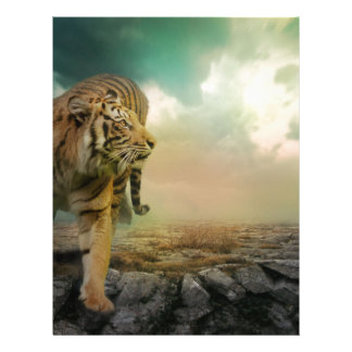 Big Tiger Letterhead