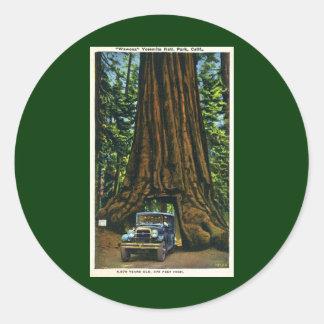 Big Tree Wawona, Mariposa Grove, CA Round Sticker