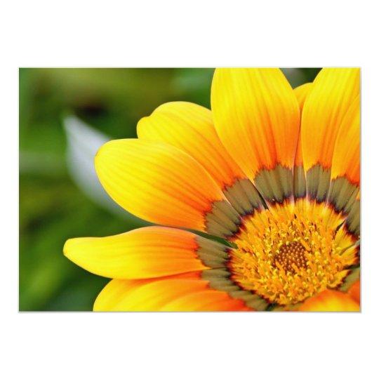 Big Yellow Flower Postcards