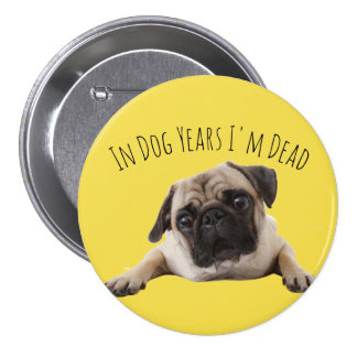 Big Yellow Pug Birthday 'Dog Years' Badge 3 Inch Round Button