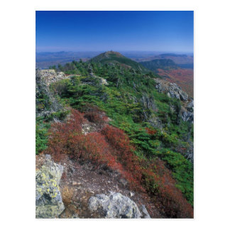 Bigelow Mountain Maine West Peak Foliage Postcard
