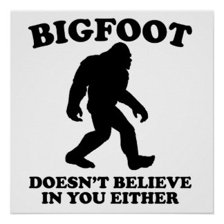 Bigfoot Doesn't Believe In You Either Poster
